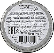 Вазелин косметический для губ увлажнение и защита со вкусом клубники - Fito Косметик — фото N3
