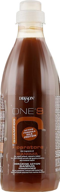 """Восстанавливающий шампунь для волос после хим.обработки с хитозаном """"Шоколад с орехами"""" - Dikson R-ripatore"""