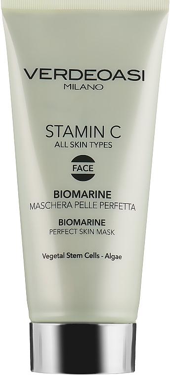 Биоморская маска для идеальной кожи лица - Verdeoasi Stamin C Biomarine Perfect Skin Mask