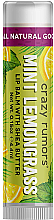 Духи, Парфюмерия, косметика Бальзам для губ - Crazy Rumors Mint Lemongrass Lip Balm