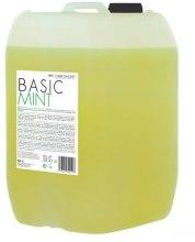 """Духи, Парфюмерия, косметика Шампунь """"Основной уход мятный"""" - HairConcept Color&Color Servise Basic Mint Shampoo"""