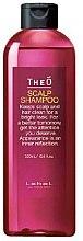 Духи, Парфюмерия, косметика Шампунь для мужчин - Lebel TheO Scalp Shampoo