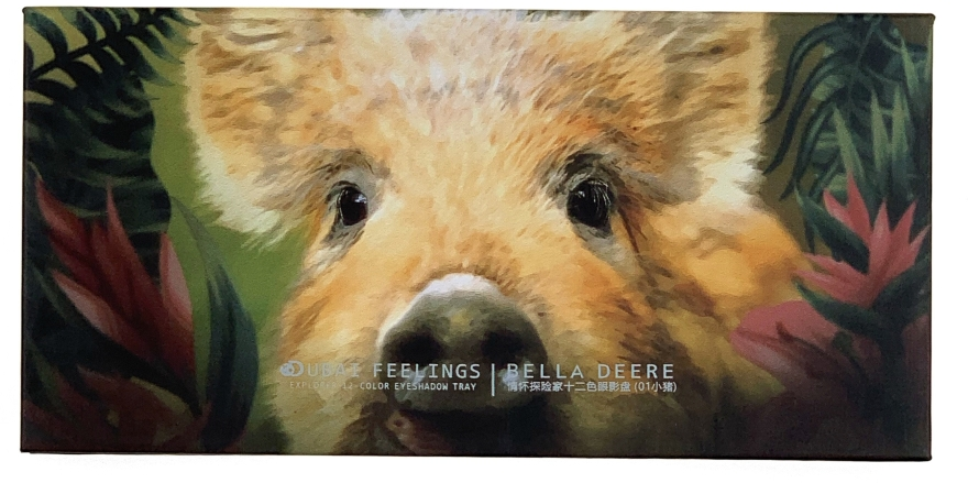 Профессиональная палетка теней для век - Veronni Explorer 12 Color Eyeshadow Pig