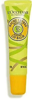 Бальзам для губ с маслом ши и бергамотом - L'Occitane Shea Butter Bergamot Lip Balm