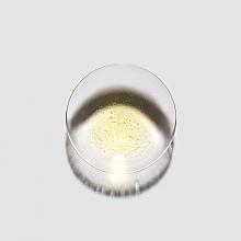Двухфазное масло-спрей для тонких и нормальных волос - Kerastase Elixir Ultime L'Huile Legere — фото N2