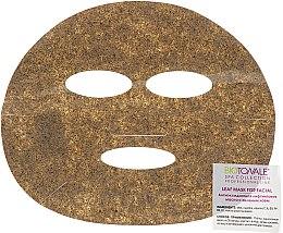 Духи, Парфюмерия, косметика Антиоксидантная лифтинговая маска с зеленым чаем - Biotonale Leaf Mask