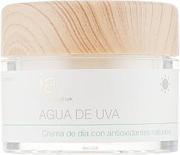 Духи, Парфюмерия, косметика Увлажняющий дневной крем для лица с Виноградной водой - Interapothek Agua De Uva Crema