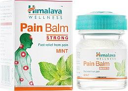 Болеутоляющий бальзам - Himalaya Herbals Pain Balm — фото N4
