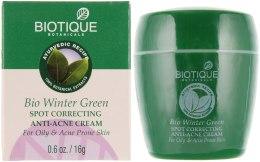 Духи, Парфюмерия, косметика Крем для лечения прыщей и угрей - Biotique Winter Green Anti-Acne Cream