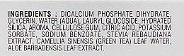 Зубная паста смесь свежей мяты с сильным регенерирующим эффектом - Lebon Cap Farrat Mood Fresh Mint Toothpaste — фото N4