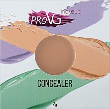 Духи, Парфюмерия, косметика Консилер-корректор для лица - PROVG Concealer