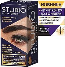 Стойкая крем-краска для бровей и ресниц - Studio Professional Color Stay — фото N2