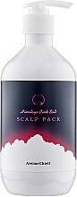 Духи, Парфюмерия, косметика Освежающая маска для кожи головы с гималайской солью - PL Avenue Chiett Himalaya Pink Salt Scalp Pack