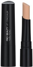 Духи, Парфюмерия, косметика Консилер для губ - Holika Holika Pro Beauty Kissable Lip Concealer