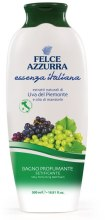 Духи, Парфюмерия, косметика Гель для душа и пена для ванны с ароматом винограда - Paglieri Felce Azzurra Bath Foam