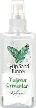 Духи, Парфюмерия, косметика Спрей антибактериальный для рук - Eyup Sabri Tuncer Rainforest Spray