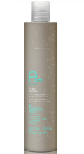 Духи, Парфюмерия, косметика Шампунь для кудрявых волос - Eva Professional E-line Control Shampoo