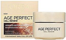 Духи, Парфюмерия, косметика Восстанавливающий дневной крем - L'Oreal Paris Age Perfect Cell Renew Day Cream