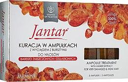 Духи, Парфюмерия, косметика Средство для очень поврежденных волос - Farmona Jantar Hair Treatment with Amber Extract