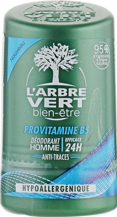 Дезодорант для мужчин с провитамином В5 - L'Arbre Vert Deodorant