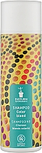 Духи, Парфюмерия, косметика Шампунь для светлых волос - Bioturm Shampoo Color Blond Nr. 107