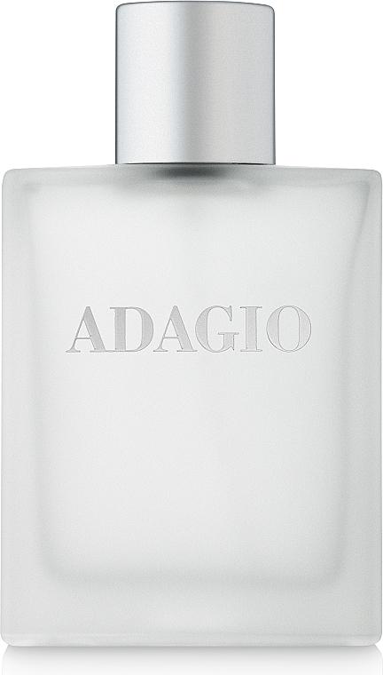 Dilis Parfum La Vie Pour Homme Adagio - Туалетная вода