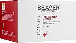 Духи, Парфюмерия, косметика Маска для интенсивного восстановления поврежденных волос - Beaver Professional Hydro Mask (mask/500ml+essence/6x10ml)
