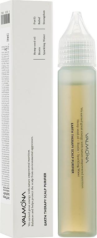 Успокаивающая сыворотка для кожи головы - Valmona Earth Therapy Scalp Purifier