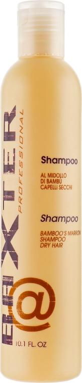 Шампунь восстанавливающий с экстрактом бамбука - Punti di Vista Baxter Professional Shampoo