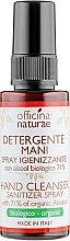 Духи, Парфюмерия, косметика Органический дезинфектор для рук - Officina Naturae Hand Cleanser Sanitizer Spray