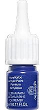 Духи, Парфюмерия, косметика Акриловая краска для ногтей - Alessandro International Acrylic Paint