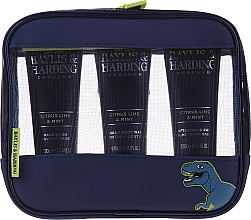 Парфумерія, косметика Набір - Baylis & Harding Men's Citrus Lime & Mint Bag(hair/body/wash/100ml+face/wash/100ml+a/sh/balm/100ml+acc)
