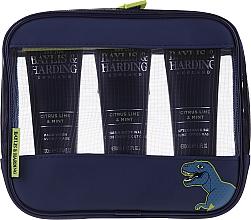 Духи, Парфюмерия, косметика Набор - Baylis & Harding Men's Citrus Lime & Mint Bag(hair/body/wash/100ml+face/wash/100ml+a/sh/balm/100ml+acc)