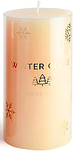 Духи, Парфюмерия, косметика Ароматическая свеча, кремовая, 9х13см - Artman Winter Glass