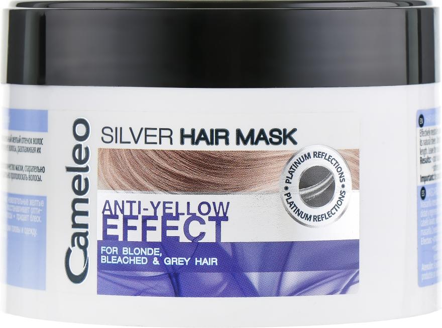 Маска для волос - Delia Cameleo Silver Mask