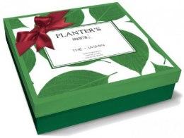 Духи, Парфюмерия, косметика Planter's Tea Jasmin - Набор (b/cr/150ml + sh/gel/150ml + edp/50ml)