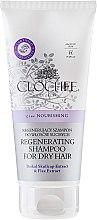 Духи, Парфюмерия, косметика Восстанавливающий шампунь для волос - Clochee Regenerating Shampoo For Dry Hair