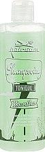 Духи, Парфюмерия, косметика Мятный шампунь против перхоти - Hairgum Hair Care Mint Anti Dandruff Shampoo