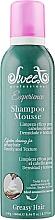 Духи, Парфюмерия, косметика Пенный шампунь для жирных волос - Sweet Professional Experience Mousse Greasy Shampoo