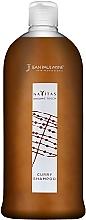 Духи, Парфюмерия, косметика Тонирующий шампунь - Jean Paul Myne Navitas Organic Touch Shampoo