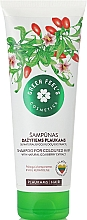 Духи, Парфюмерия, косметика Шампунь для окрашенных волос - Green Feel's Shampoo For Coloured Hair