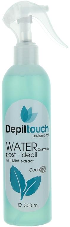 Косметическая вода после депиляции с экстрактом мяты - Depiltouch Professional