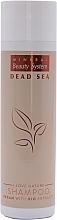 Духи, Парфюмерия, косметика Минеральный шампунь для волос - Mineral Beauty System I Love Nature Shampoo
