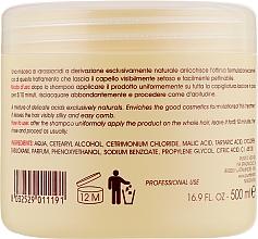Маска для волосся з фруктовими кислотами - Baxter Advanced Professional Hair Care Delicate Fruit Acids Mask — фото N2