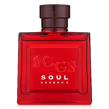 Christian Gautier Soul Essence - Туалетная вода (тестер с крышечкой) — фото N2