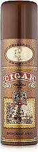 Духи, Парфюмерия, косметика Parfums Parour Cigar - Парфюмированный дезодорант для мужчин