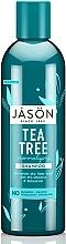 Духи, Парфюмерия, косметика Нормализирующий шампунь «Чайное дерево» - Jason Natural Cosmetics Tea Tree Treatment Shampoo