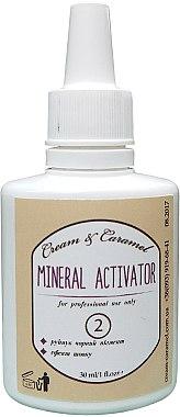 """Активатор хны с эффектом """"Шелк"""" - Cream & Caramel Mineral Activator 2"""