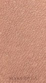 Тающая пудра для бровей - Missha Melting Powder Brow — фото Dark Brown