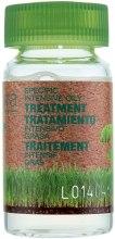 Духи, Парфюмерия, косметика Лосьон для жирной кожи головы в ампулах - Salerm Biokera